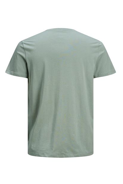 Venıcebeach Tee Ss Crew Neck Yeşil Erkek Tişört